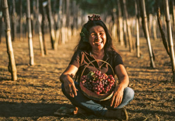 A walk-in farm guest and her basket of fruits