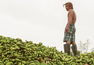 A truckload of bananas