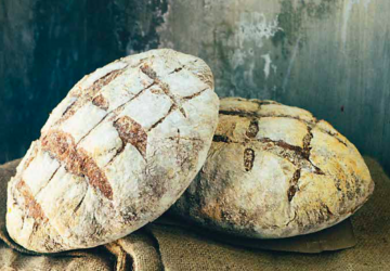 Pane toscano is a hard-shelled loaf with a soft body that is achieved through a long rising period