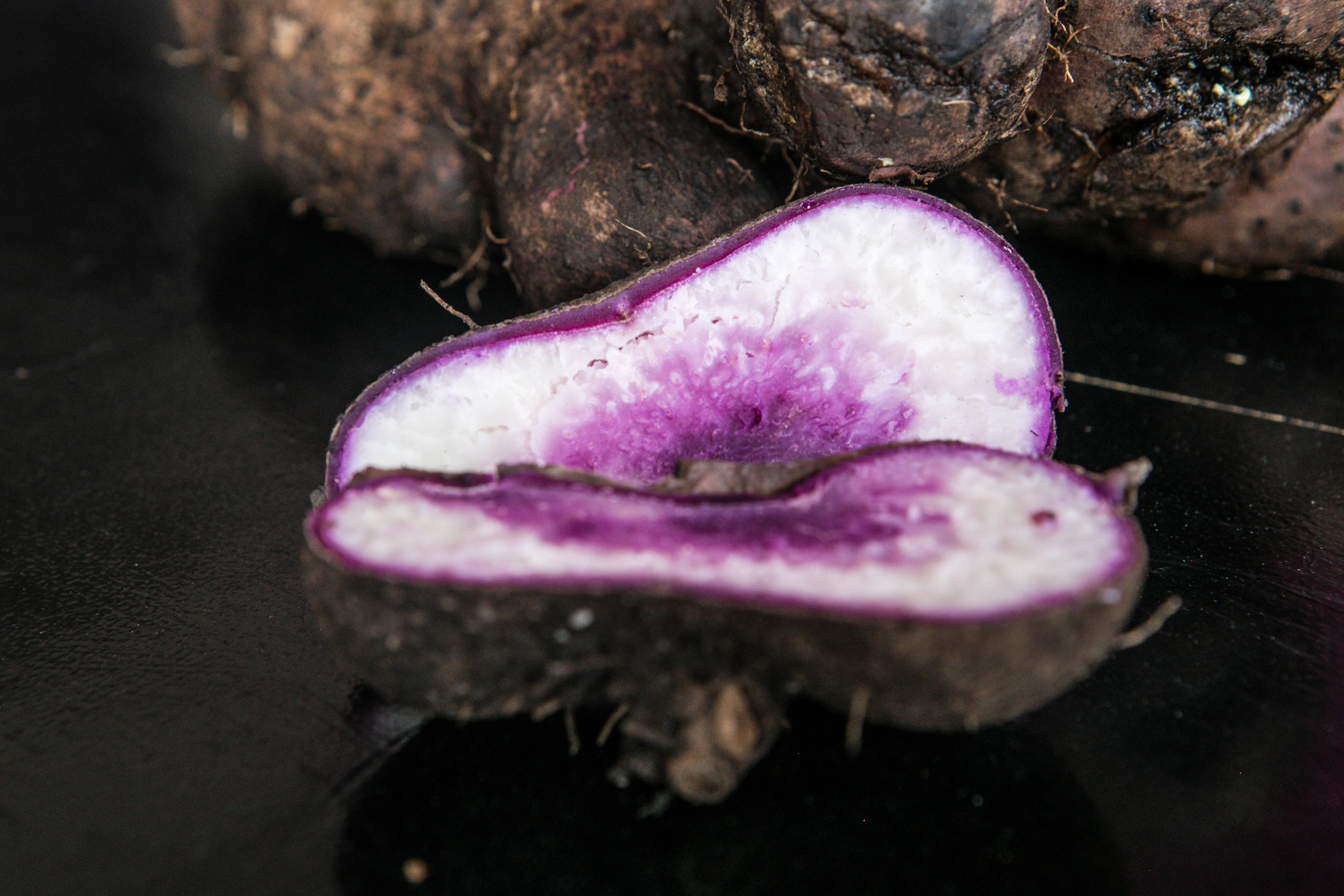 Ube, or ubi as the people of Bohol call it, is also internationally known as purple yam