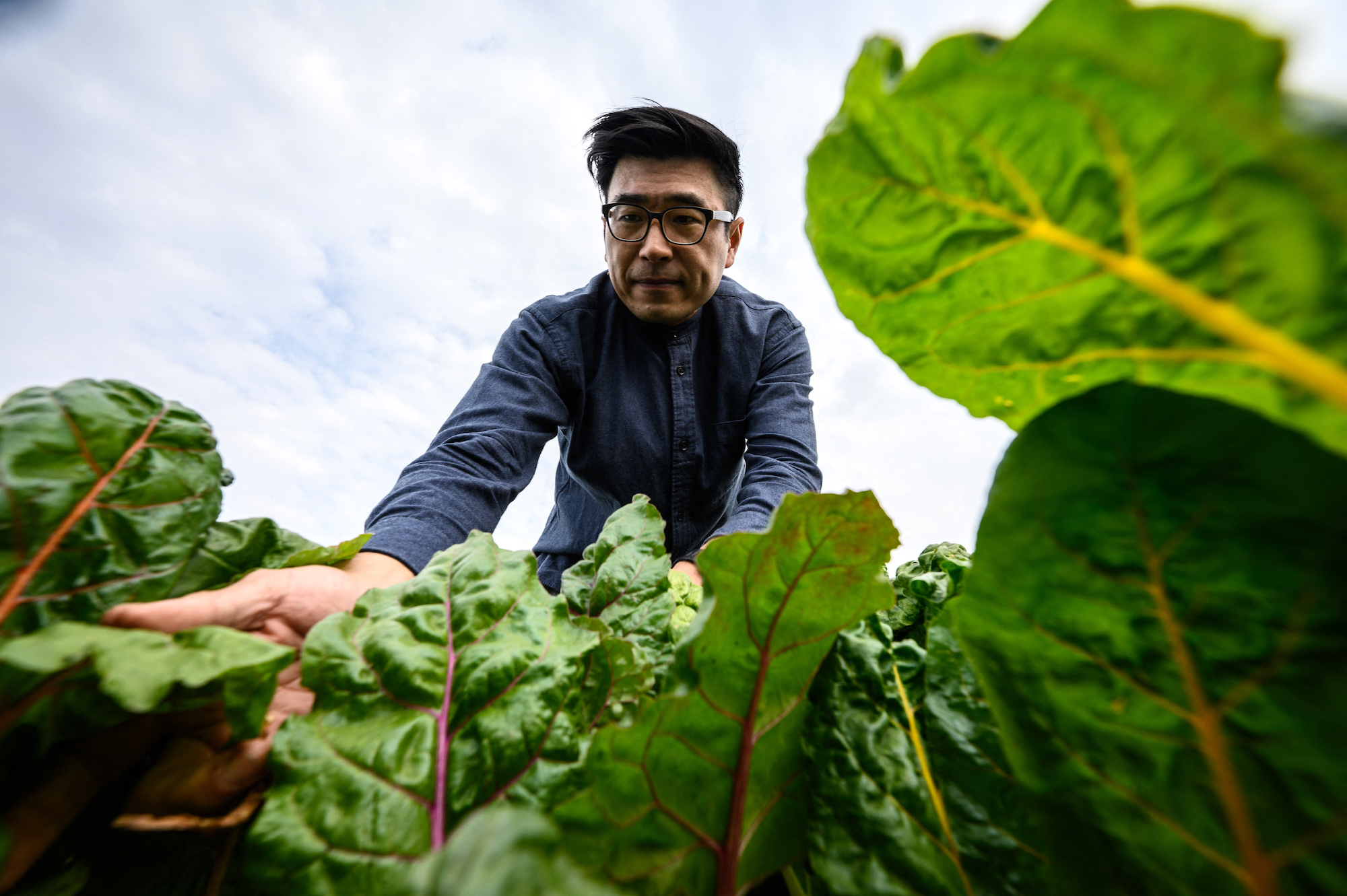 One of Hong Kong's prominent advocate of urban farming Andrew Tsui